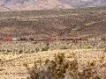 3-arizona-and-cactusses-a-wellknown-match