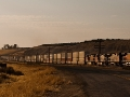 10-double-stack-train-photographed-from-beside-bena-road