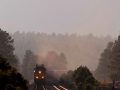 20-evening-atmosphere-notice-the-deer-at-the-left-of-the-milepost
